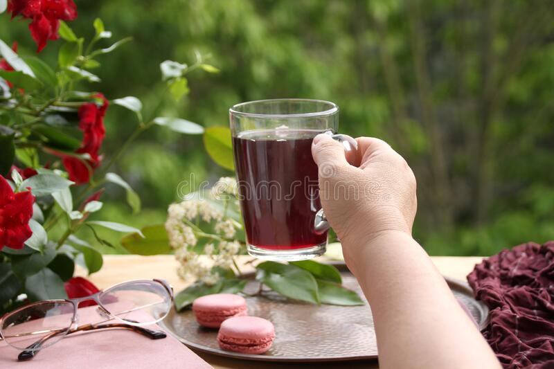 Female hand holds pomegranate, cherry juice, fruit drink in a glass mug, French pasta cake in the garden, clematis flowers, green. Foliage, concept lifestyle stock photos
