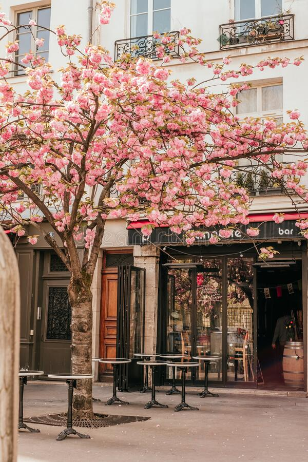 French cafe terrace. Paris, France - April 6, 2019: Charming traditional french cafe with tables on terrace, landmark in Paris royalty free stock photography