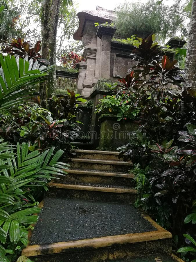Garden path, Balinese house compound. A photo showing a stone path leading through the beautiful lush natural style garden of a Indonesia Bali house compound stock images