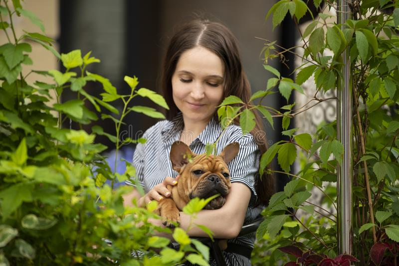Girl with a french bulldog puppy sitting on a cafe terrace on a summer day. royalty free stock images