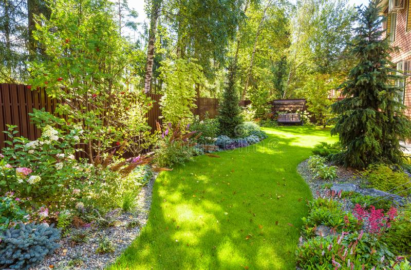 Landscaping in green home garden. Landscape design with plants and flowers at residential house. Scenic view of nice landscaped. Garden in backyard. Scenery of royalty free stock image