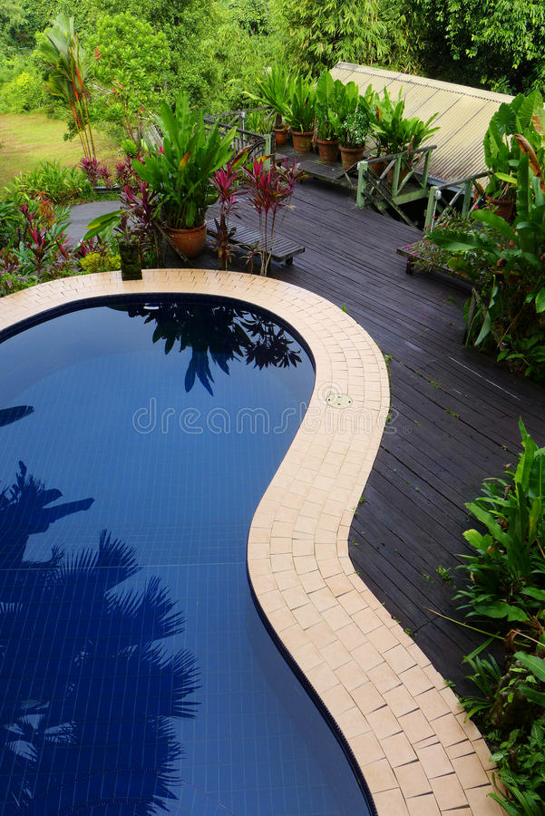 Wood patio & pool layout with landscaping. Top view looking down at pool patio - A photograph showing the design and layout of a blue swimming pool on top of a royalty free stock photography